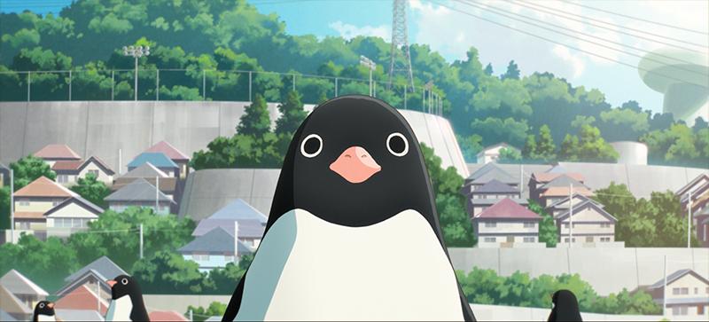 penguin-highway-031
