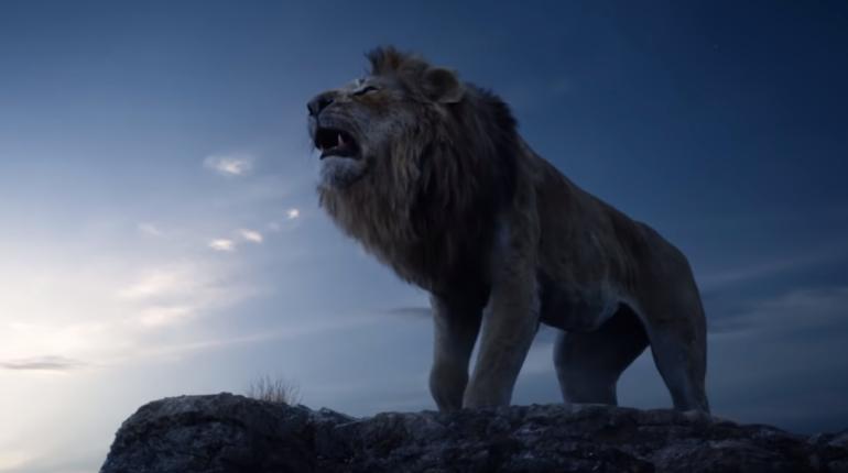 Il Re Leone campagna per salvare leoni
